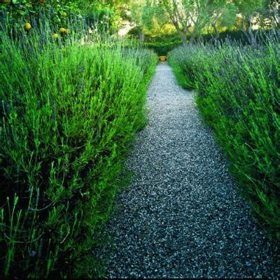 types of pathways in landscaping id范jos kaip dekoruoti sodo takelius