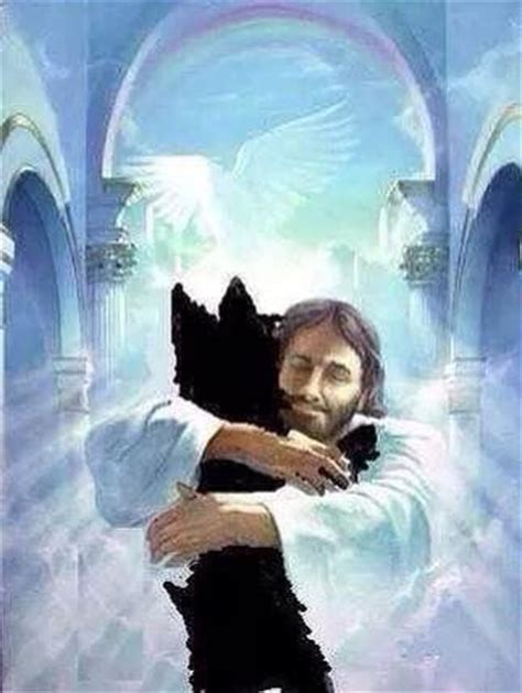 picture of jesus from the book heaven is for real jesus welcoming a in heaven words of sympathy