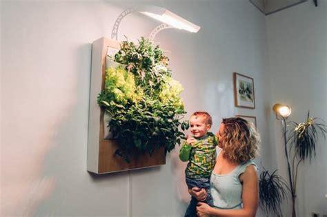 indoor wall garden meet herbert the vertical hydroponic wall garden treehugger