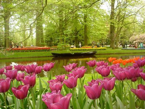 netherlands flower garden amazing magazine the world s largest flower garden