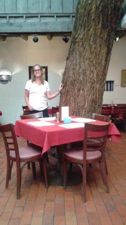 la placita dining rooms la placita tree picture of la placita dining rooms