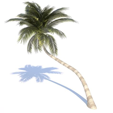 Overlay Kitchen Cabinets coconut tree 02 med poly 3d model game ready obj 3ds