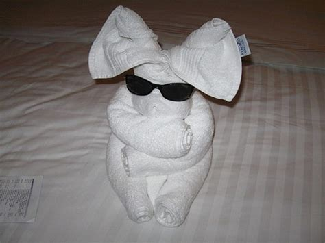 origami towels hotel towel origami damn cool pictures