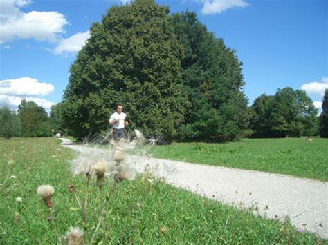 Radweg Englischer Garten München by 10 Gute Gr 252 Nde F 252 R M 252 Nchen Die Weltstadt Mit Herz