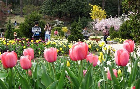 photos of gardens visit duke gardens