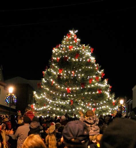 lights tree in bristol market trees lights 2016 2017