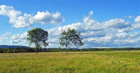 zimbabwe biomes