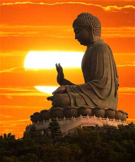 buddhist meditation buddhist monks in meditation 7 scientifically proven