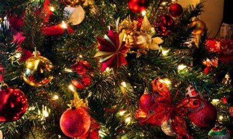 la historia arbol de navidad historia 225 rbol de navidad origen y tradici 243 n