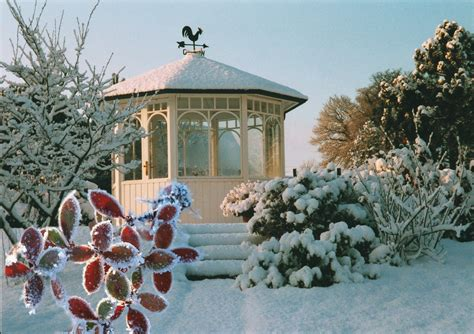 Der Garten Der Toten Bäume by Winter