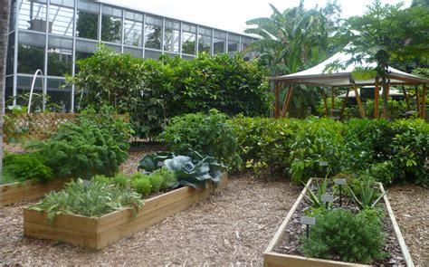 my vegetable garden acting my vint age what my vegetable garden is not