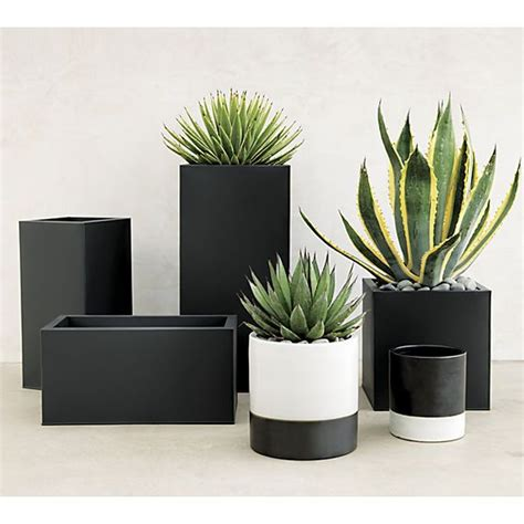 black planters 25 best ideas about large outdoor planters on