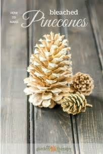 decorations and crafts 25 unique pine cone decorations ideas on pine