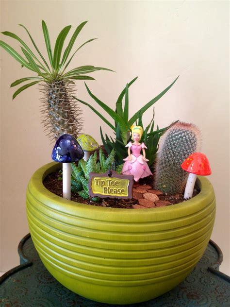 cactus planters best ideas about cactus garden planter design cactus
