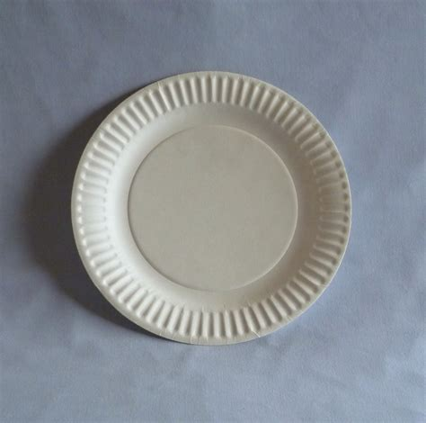 with paper plates 9 quot paper plate wb plates bowls biodegradable