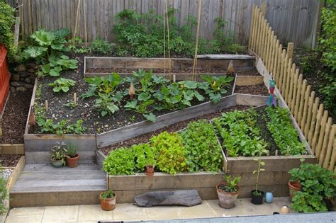 self sufficient vegetable garden how to create a self sustaining garden revozin