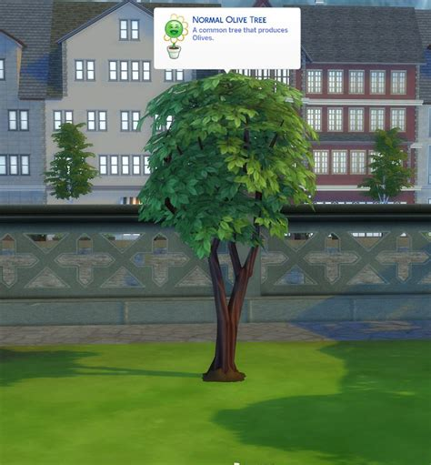 sims 4 olive garden 17 best images about the sims 4 cc food drink on posts olives and the sims