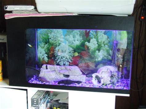 aquarium hainaut toutypasse be