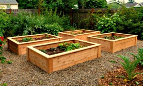 what to plant in raised vegetable garden how to build raised vegetable garden beds