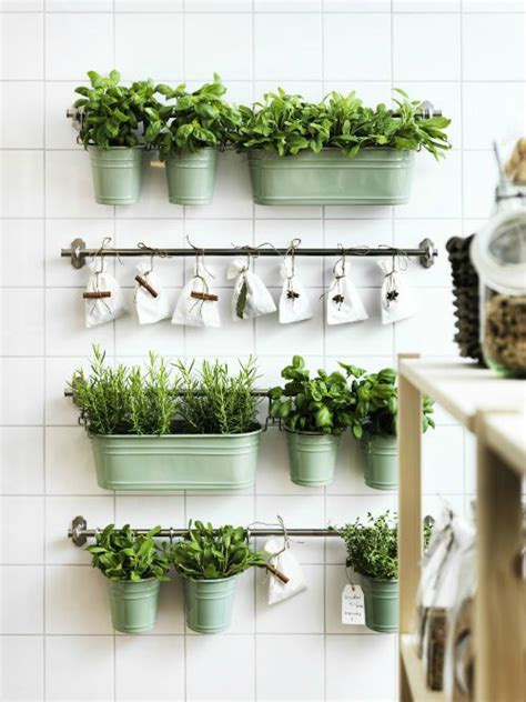 Thyme In Your Kitchen by How To Decorate Your Kitchen With Herbs 40 Ideas Decoholic