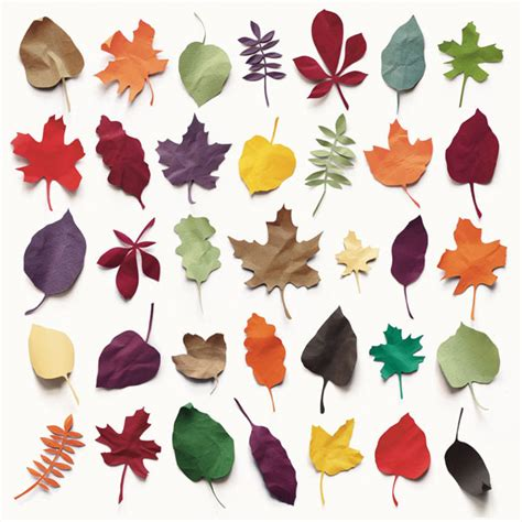 paper leaves craft colored paper leaves lushlee