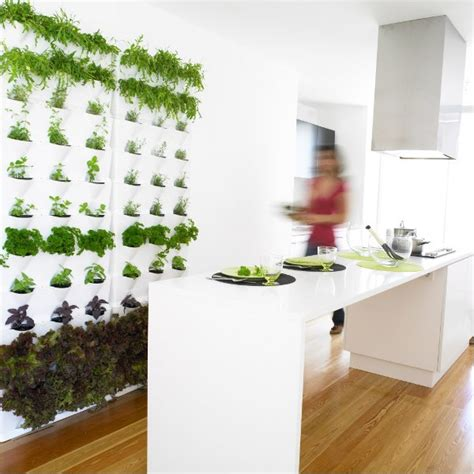 Thyme In Your Kitchen by Indoor Herb Gardens And Salad Walls Inspiration