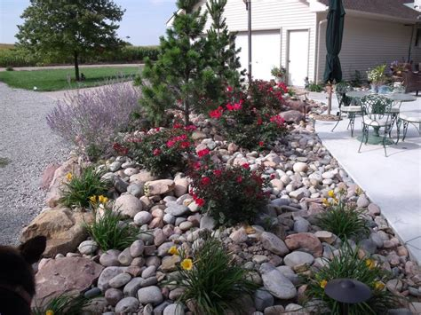 garden bed rocks rock bed garden ideas