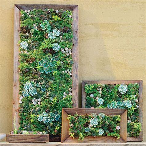 how to make a vertical wall garden best 25 living walls ideas on vertical garden