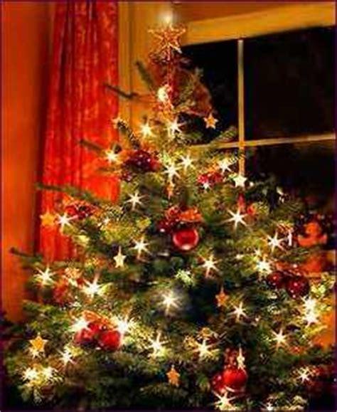 der weihnachtsbaum kerstboom maar waarom zetten wij een boom midden in de kamer