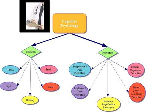 cognitive psychology cisco s page gt d it s of a big deal
