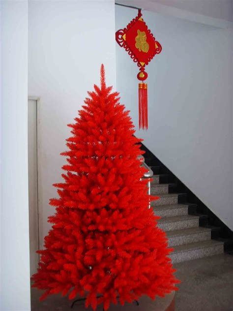 roter weihnachtsbaum common tree china commen tree