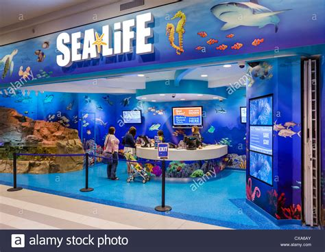 ticket desk at the sea aquarium in the mall of america stock photo royalty free image