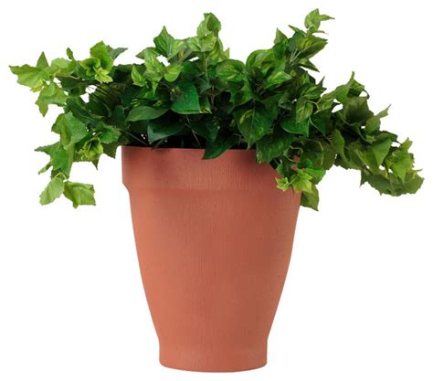 large indoor planter terra cotta planter large traditional indoor pots and