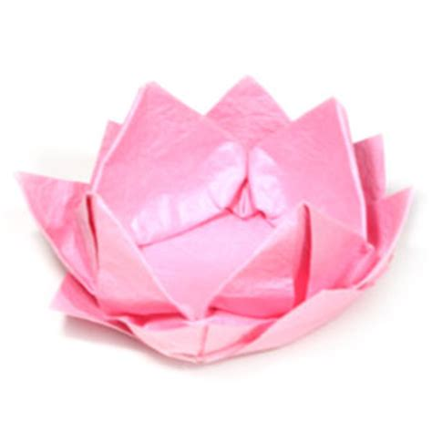 how to make origami lotus flower how to make a new origami lotus flower page 1