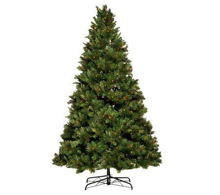 qvc bethlehem lights trees bethlehem lights 6 5 trevor pine tree w instant