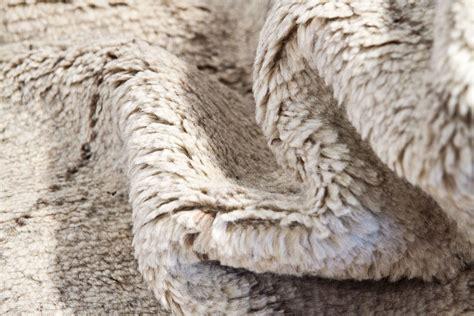 alfombras de pelo largo online c 243 mo limpiar las alfombras de pelo largo nos preparamos