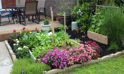 simple vegetable garden ideas simple vegetable garden ideas for your living amaza design