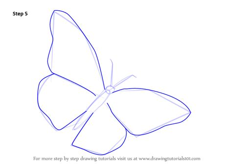 butterfly step by step learn how to draw a monarch butterfly butterflies step