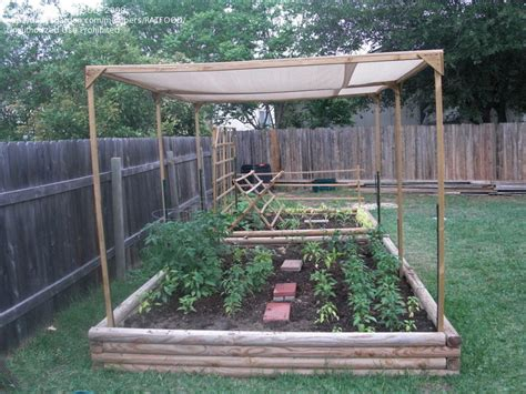 shade cloth for vegetable gardens beginner gardening shade cloth 1 by ratfood