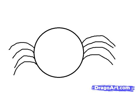 draw a draw a simple spider step by step bugs animals