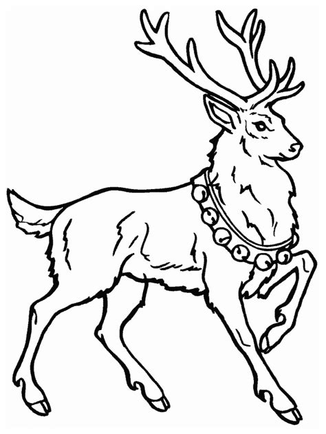 coloring book pictures deer coloring pages coloringpages1001
