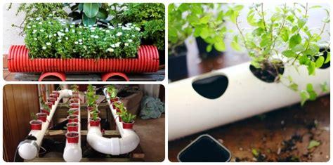 pvc garden ideas 12 original pvc pipe planter ideas for your garden