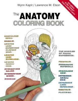 anatomy picture book books information about