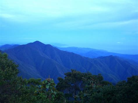 blue mountain the jamaica of henry or bob marley victor travel