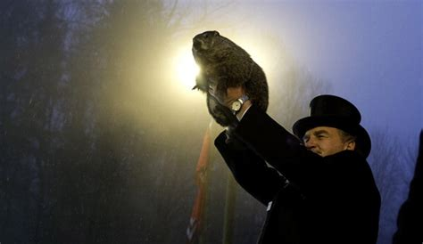 groundhog day meaning in groundhog day 2016 will punxsutawney phil see his shadow