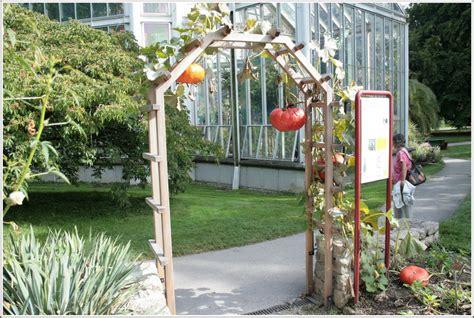 unique backyard ideas triyae unique backyard ideas various design