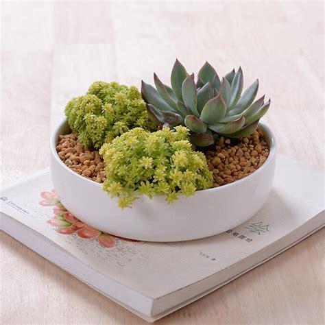 modern ceramic planter buy wholesale glazed ceramic planters from china
