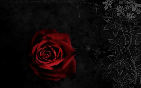 pin gothic rose background on pinterest