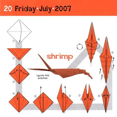 origami shrimp 14 best ideas about origami on clams origami