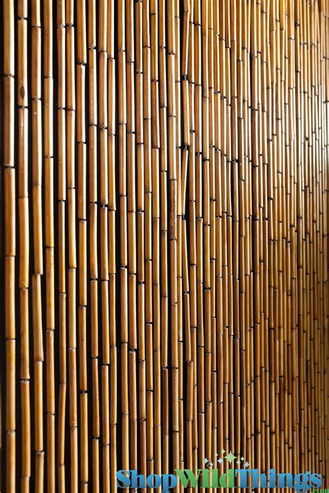 doorway beaded curtains door curtains 187 beaded door curtains inspiring pictures